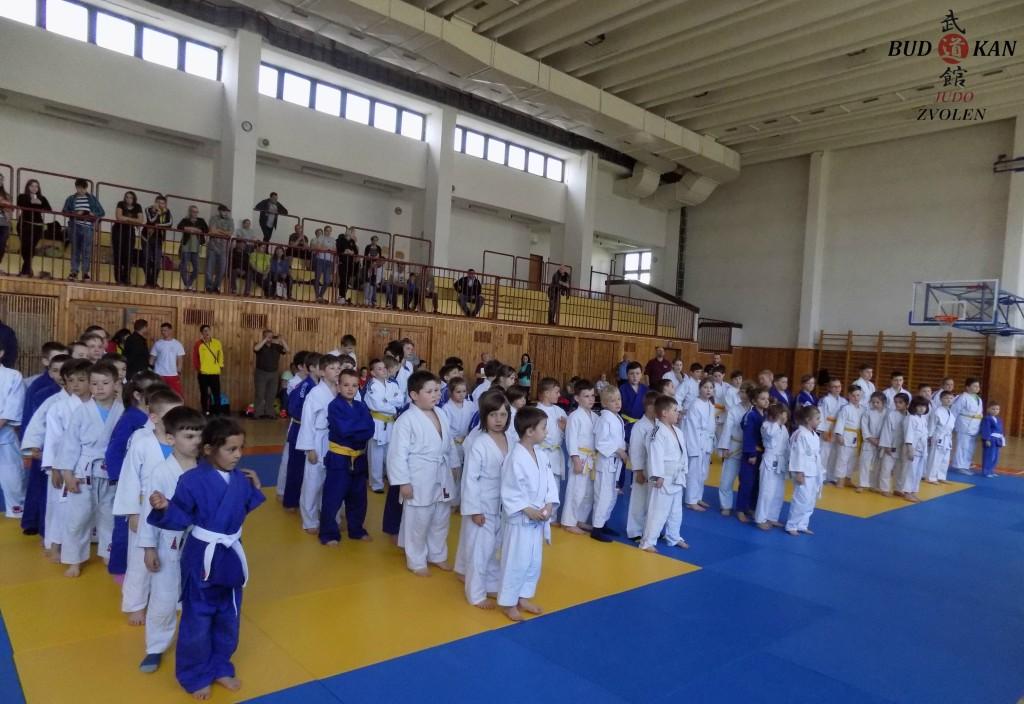 Olympijské nádeje v Judo
